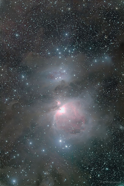 Photos: オリオン星雲(IMG_1852)