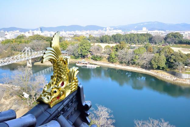 岡山城のしゃちほこ
