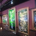 Photos: 8月12日「面河茶屋画廊」
