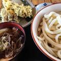 Photos: ねぎ肉汁うどんと舞茸天ぷら