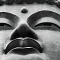 Photos: Ushiku great statue of Buddha.