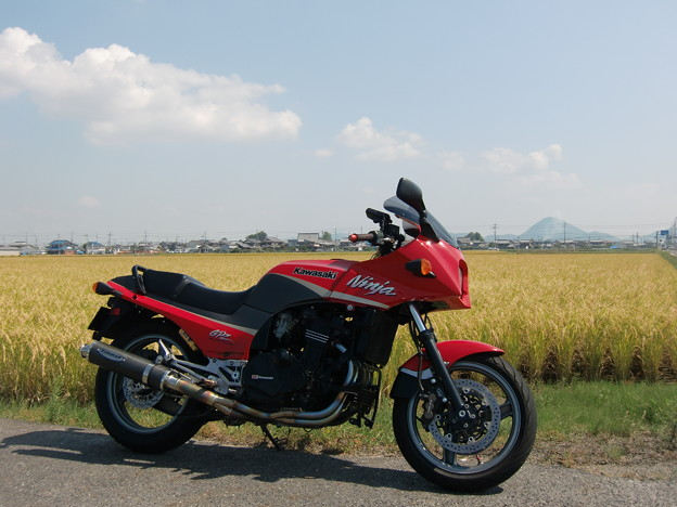 近江富士と実りの金色を背景に・・・