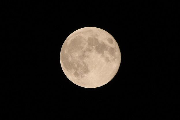 写真: 超十六夜の月 2014