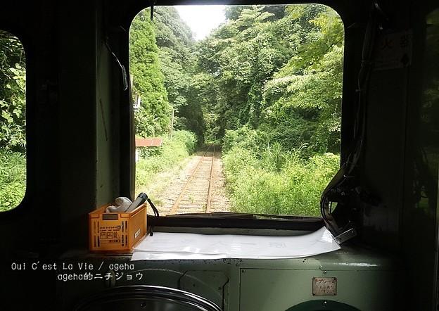 ほのぼの列車旅。(いすみ鉄道 イタリアンランチクルーズ2014)