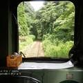 Photos: ほのぼの列車旅。(いすみ鉄道 イタリアンランチクルーズ2014)