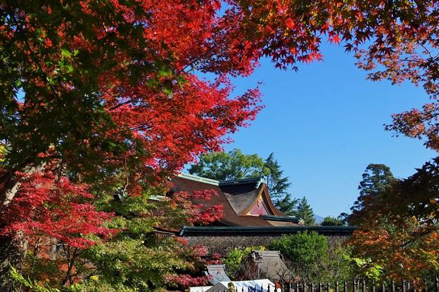 Photos: 北野天満宮本殿