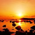 写真: 輝き 静寂…春の日本海