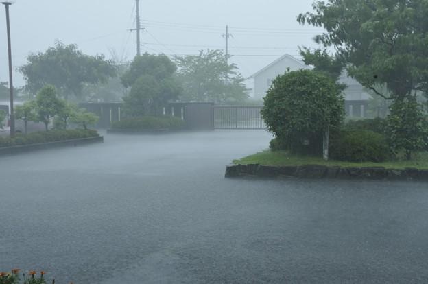 大雨、冠水