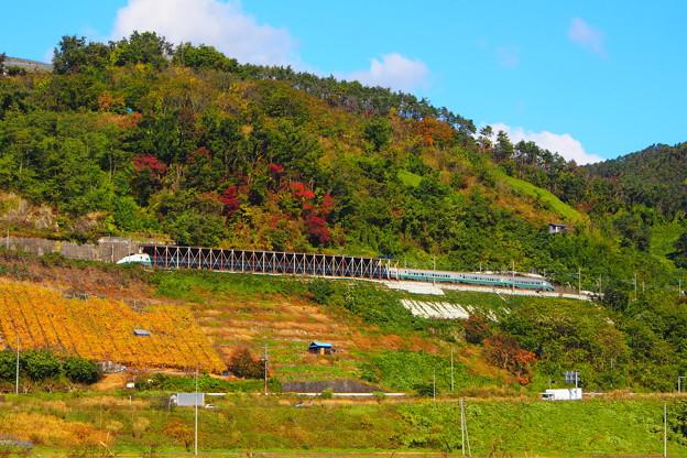 山形新幹線つばさ 旧塗色 赤湯~中川