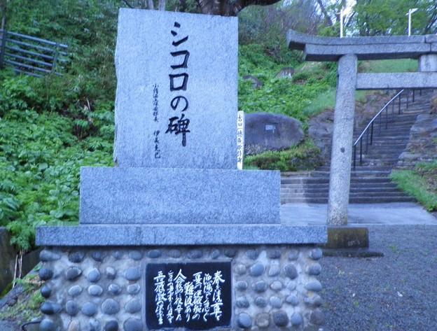 シコロの碑