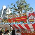 Photos: 妖怪カステラ
