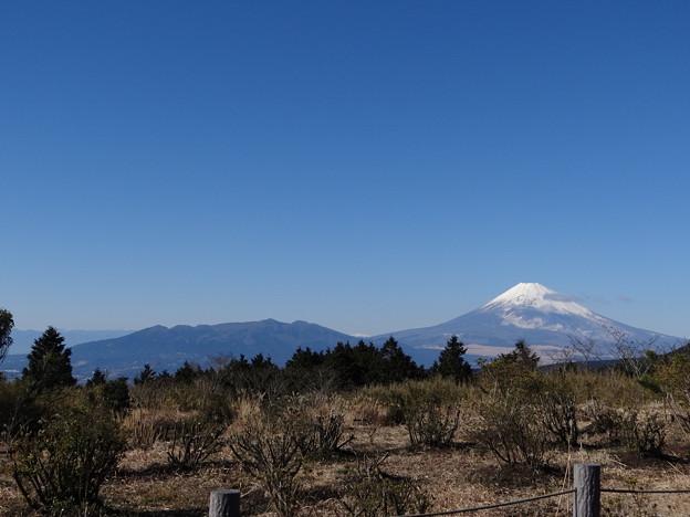 左が最初の富士山だって