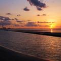 写真: 優しい落日