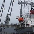 Photos: 木材運搬船 Tanker for timber transport