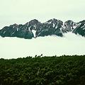 写真: 雲上の穂高連峰