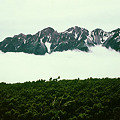 Photos: 雲上の穂高連峰