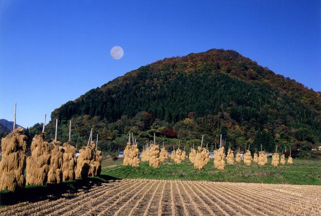 写真: 山村に見事な残月