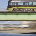 Photos: やまどり、浅川上空通過中