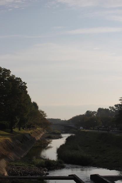 南浅川の朝