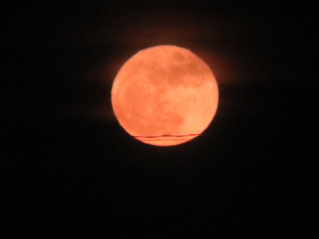 赤い月見ましたか?
