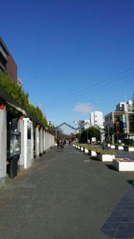 Photos: 綾瀬です