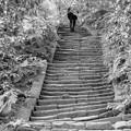 Photos: 瑞泉寺の石段