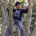 写真: 木登り中の甥