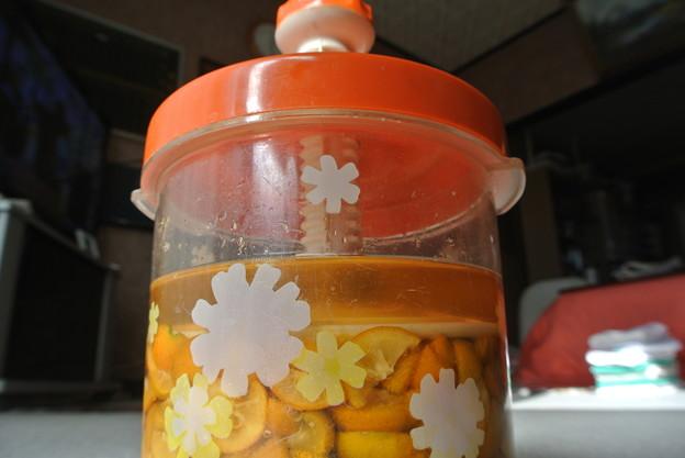 金柑の蜂蜜漬け