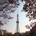 写真: 20111104名古屋テレビ塔