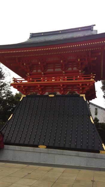 写真: IMG_20170304_124427
