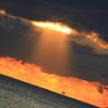 写真: マグマ太陽