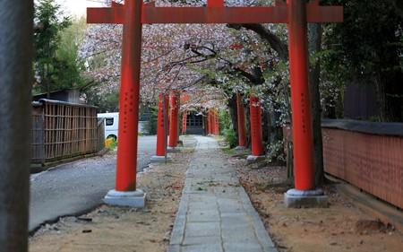 竹中稲荷神社09