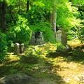 東福寺・方丈庭園31