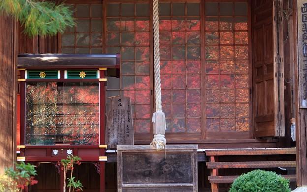 Photos: 神蔵寺19