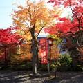 Photos: 鍬山神社72