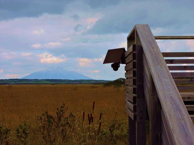 Photos: サロベツ原野の草紅葉と利尻山-3