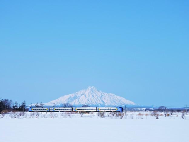 Photos: 特急「スーパー宗谷」と利尻富士_1