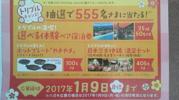 http://art25.photozou.jp/pub/509/3068509/photo/246055862_624.v1489415776.jpg