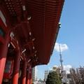 写真: 浅草寺とスカイツリー
