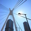 月島 中央大橋 2