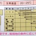 Photos: 【黒エダマメ】快豆黒頭巾
