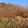 Photos: 八海山とススキ