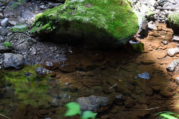 大谷木川 (4)