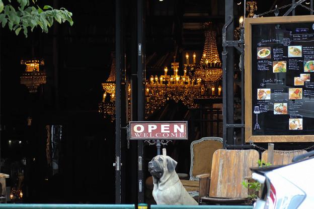 アンティーク・喫茶店