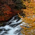 Photos: 竜頭の滝 (4)