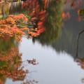 Photos: 鎌北湖(7)