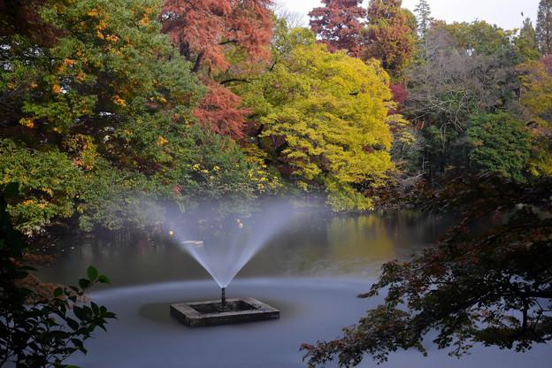 井之頭公園(2)