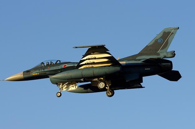 F-2A(2)