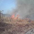 写真: 今年の川焼きは、最近になくきれいに焼けました>>三田市藍本日出坂をお通りの時は、ぜひ見て下さい>>