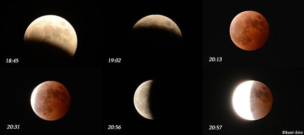 2014.10.8 皆既月食
